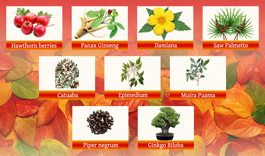 VigRX natural compounds